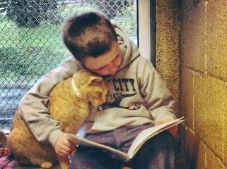 leggere-ai-gatti-1